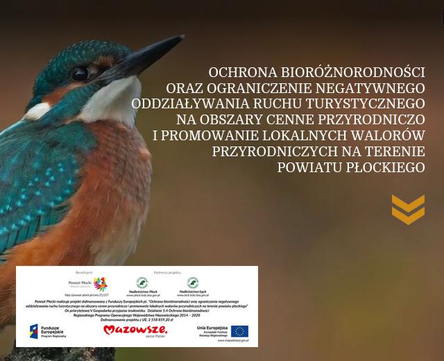 Projekt Powiatu Płockiego