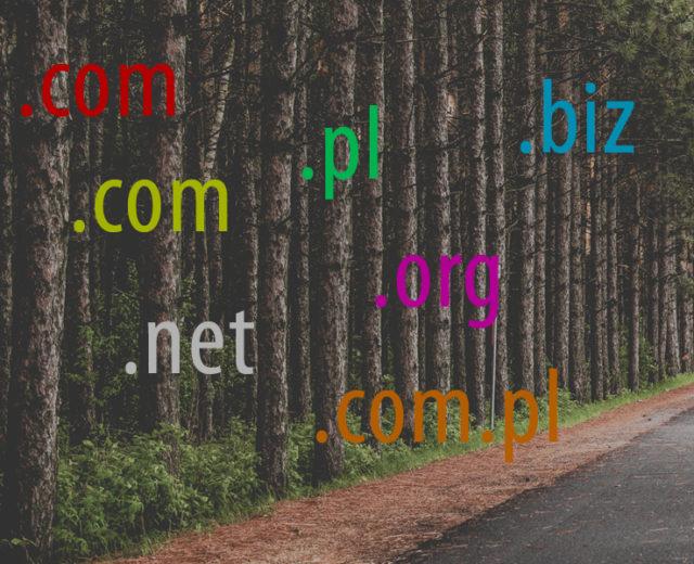domeny z wieloma rozszerzeniami